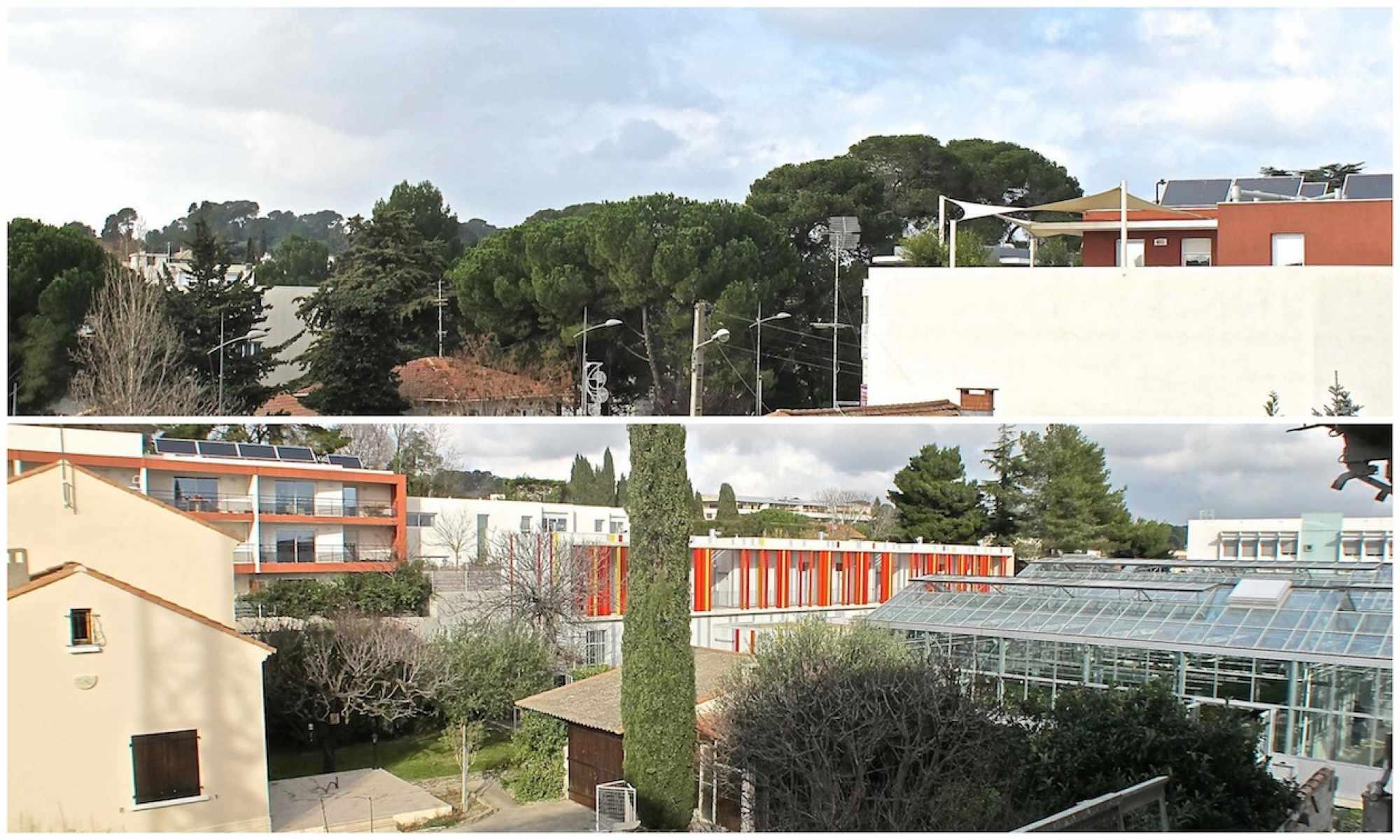 Promoteur immobilier Montpellier : pourquoi faire ce choix